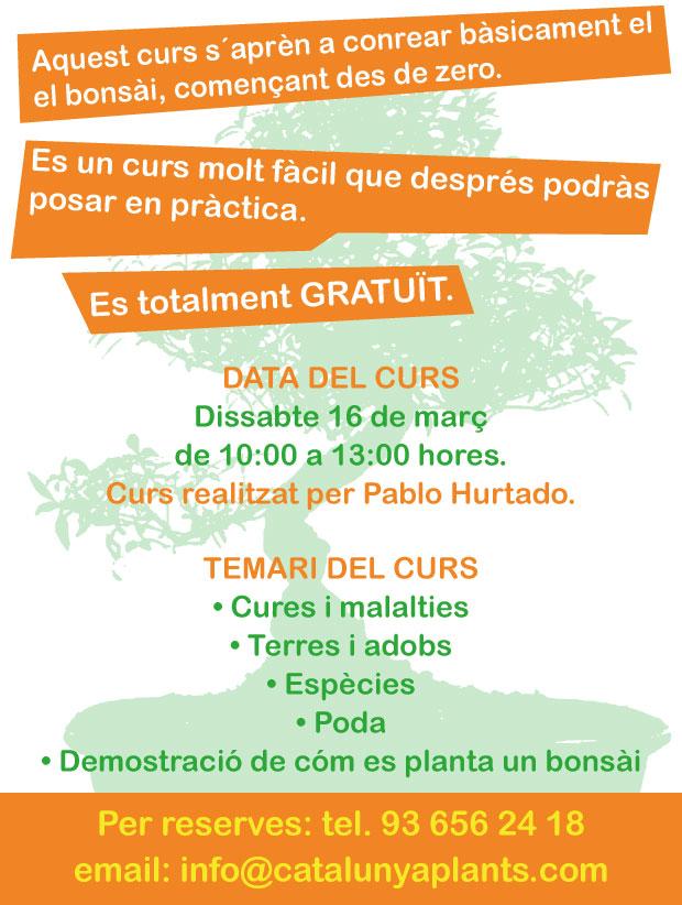Curs sobre cultiu de Bonsài a Garden Catalunya Plants (Barcelona)