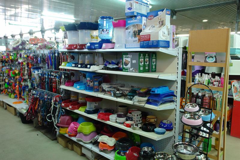 venta-comida-accesorios-gatos-barcelona