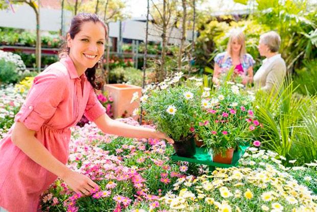 4 raons definitives per comprar en un centre de jardineria - Centros de jardineria madrid ...