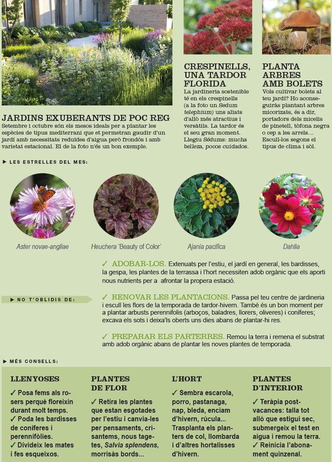 Agenda de l hort i jard de setembre garden catalunya - Garden terrassa ...
