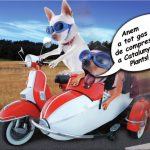 Descarrega´t el nostre catàleg de Mascotes