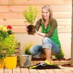 Consells per a principiants en la cura del jardí