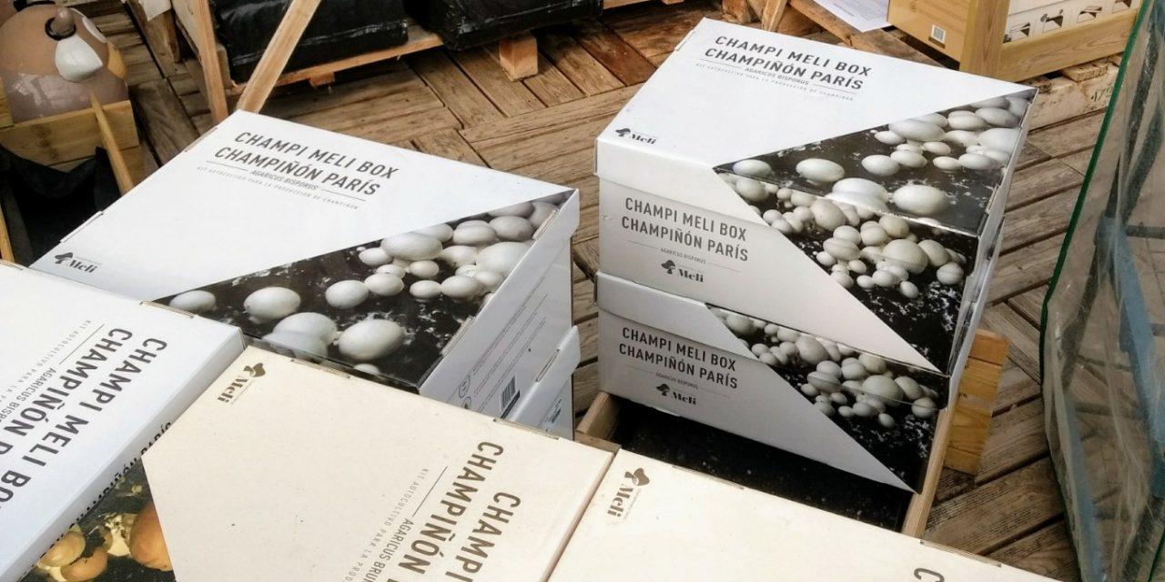 Ja tenim a la venda els kits de cultiu de bolets