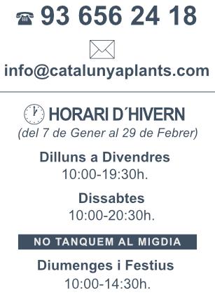 banner-horari-HIVERN-catplants