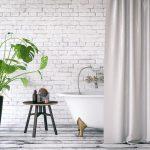 Plantes ideals per al bany