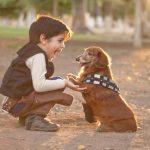 Com i per què ensenyar a un nen a  tenir cura d´una mascota