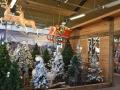 decoracio-nadal-2017-catalunya-plants-1