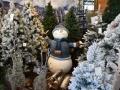decoracio-nadal-2017-catalunya-plants-8