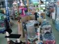 accesorios-para-mascotas-en-barcelona-tienda