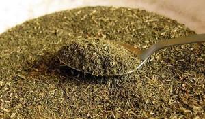 Estevia – Edulcorante natural