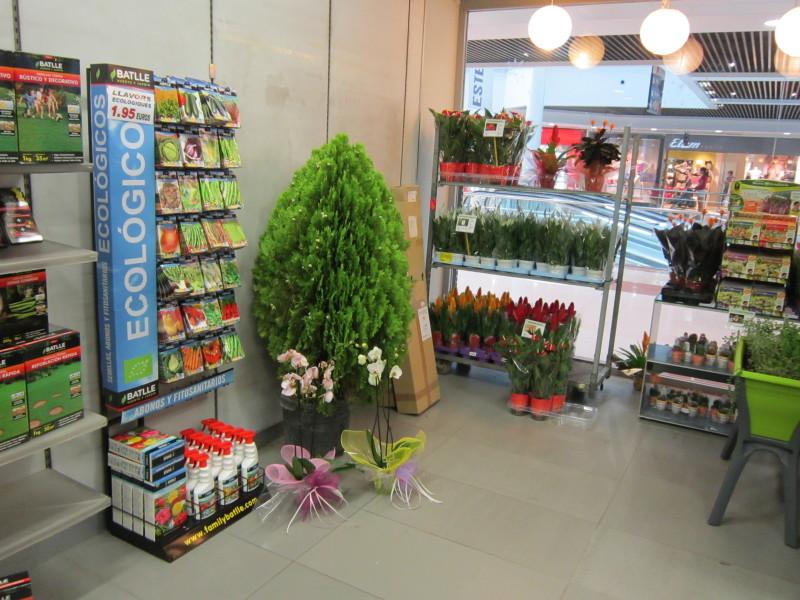 Gran xito de p blico en el showroom de catalunya plants for Productos jardineria barcelona