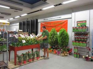 Gran éxito de público en el Showroom de Catalunya Plants en el Centro Comercial Llobregat Centre de Cornellà