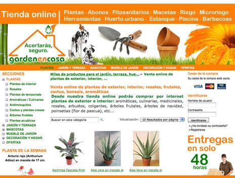 Venta online de plantas de exterior interior rosales share the knownledge - Plantas de interior online ...