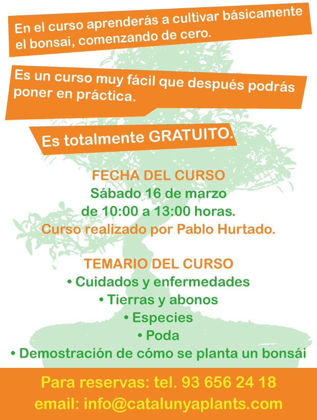 Curso sobre cultivo de Bonsái en Garden Catalunya Plants (Barcelona)