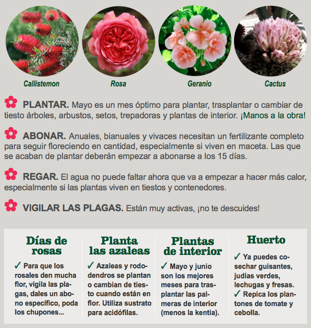 Agenda del Huerto y Jardín para el mes de Mayo