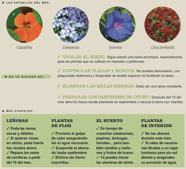 Agenda del Huerto y Jardín para el mes de Agosto