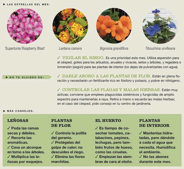 Agenda del Huerto y Jardín para el mes de Julio