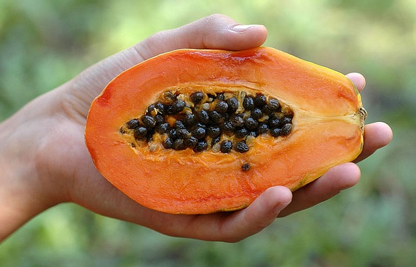 La Papaya – Fruta tropical muy saludable