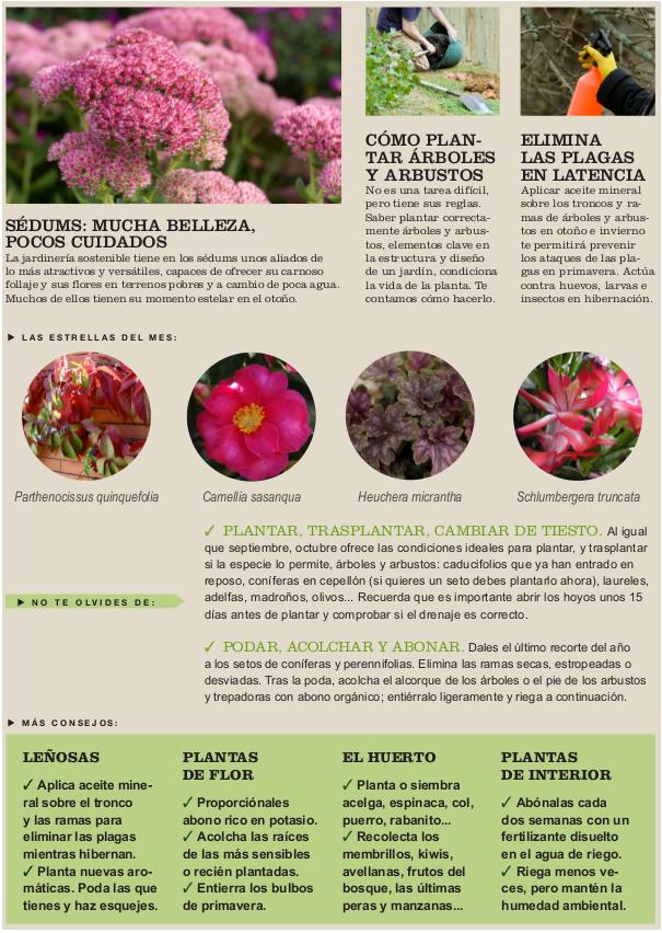 Agenda del Huerto y Jardín para el mes de Octubre