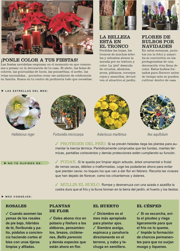 Agenda del Huerto y Jardín para el mes de Diciembre