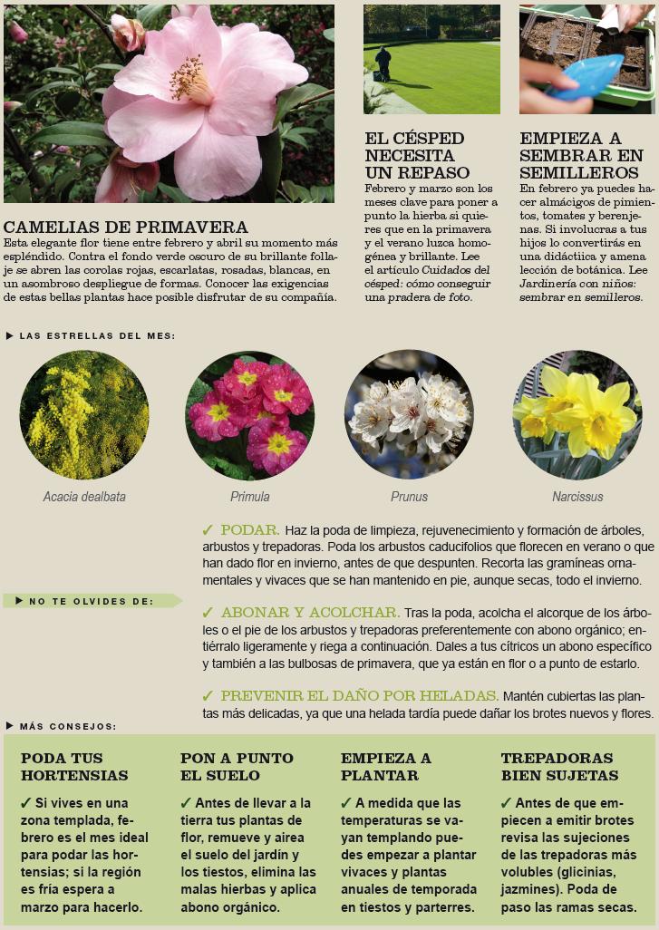 Agenda del jardín de Febrero