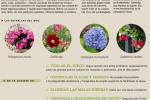 agenda-jardin-agosto-2014