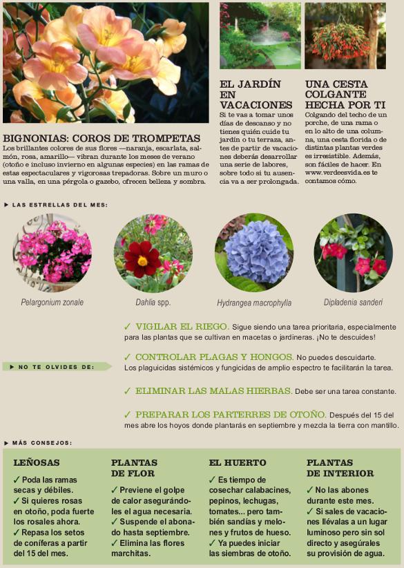 Agenda del jardín de Agosto.