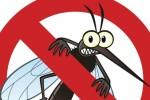 mosquitos-free