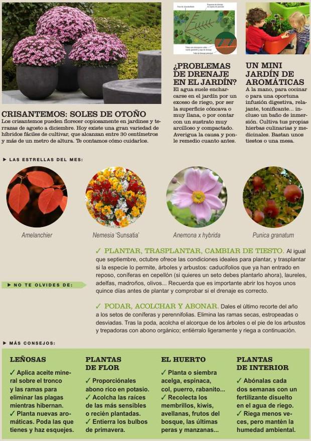 Agenda del Huerto y el Jardín de Octubre.