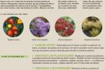agenda-jardin-huerto-septiembre-2014