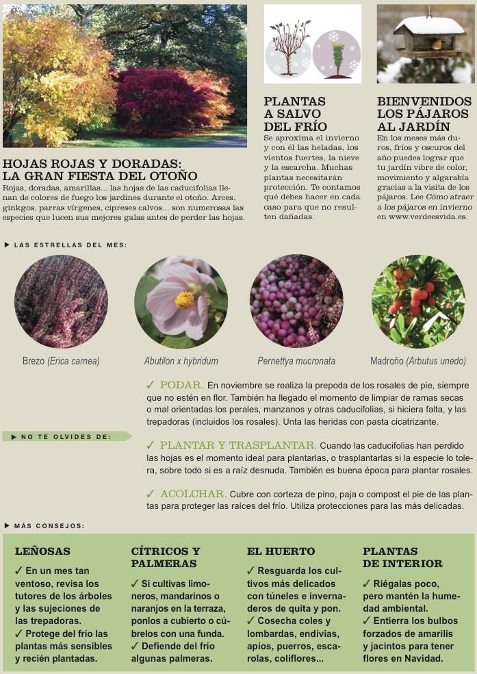 Agenda del Huerto y el Jardín de Noviembre.