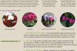 agenda-jardin-huerto-diciembre-2014