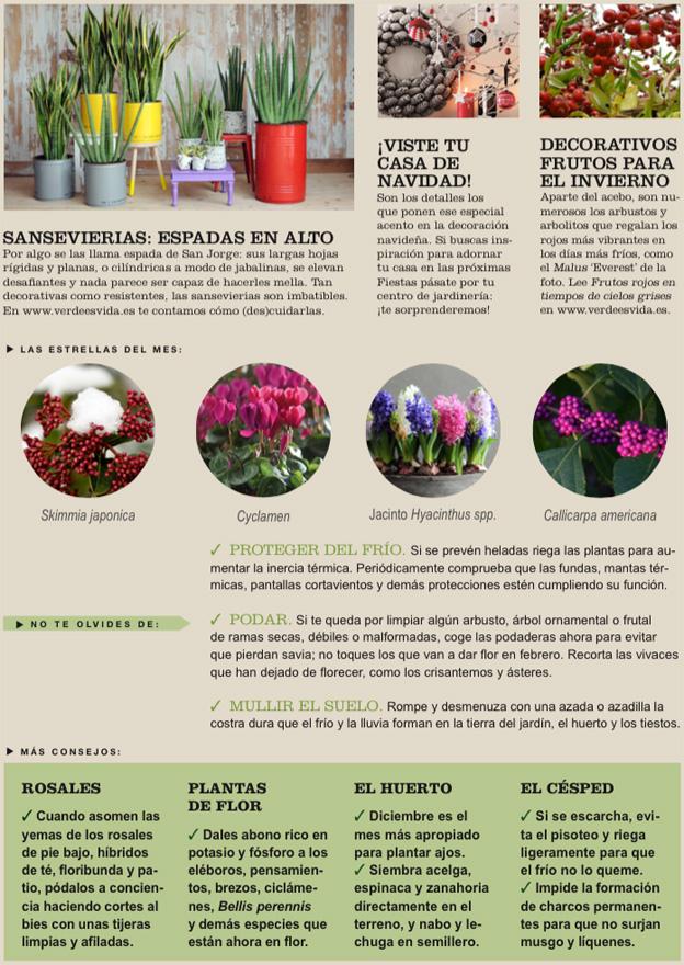 Agenda del Huerto y el Jardín de Diciembre.