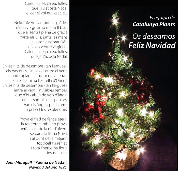 El equipo de Catalunya Plants os deseamos Feliz Navidad.