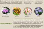 agenda-jardin-huerto-enero-2015