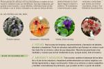 agenda-huerto-jardin-febrero-2015
