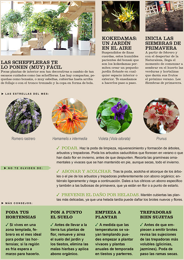 Agenda del Huerto y Jardín de Febrero.