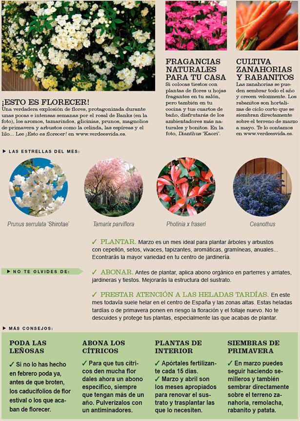 Agenda del Huerto y Jardín de Marzo