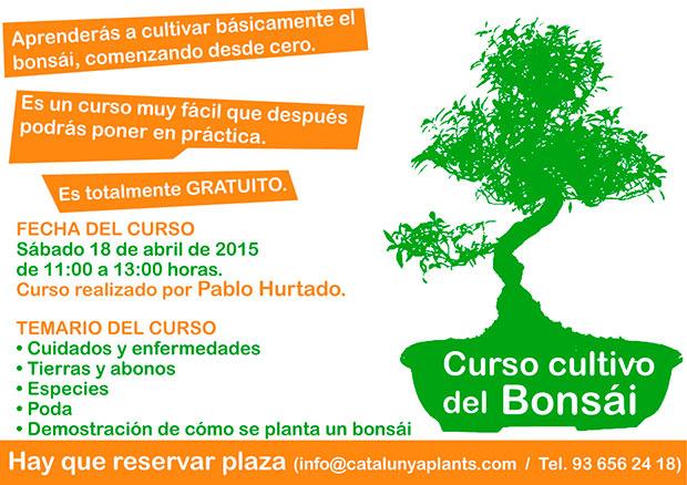 ¿Te gustan los bonsáis? Apúntate a nuestro curso gratuito.