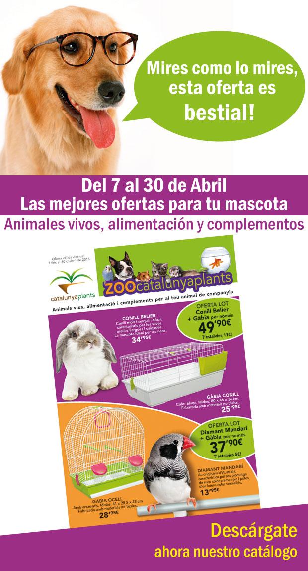 anuncio-mascotas