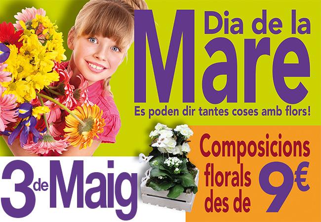 Domingo 3 de mayo, Día de la Madre, regala flores.