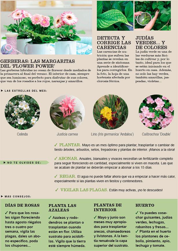 Agenda del Huerto y Jardín de Mayo