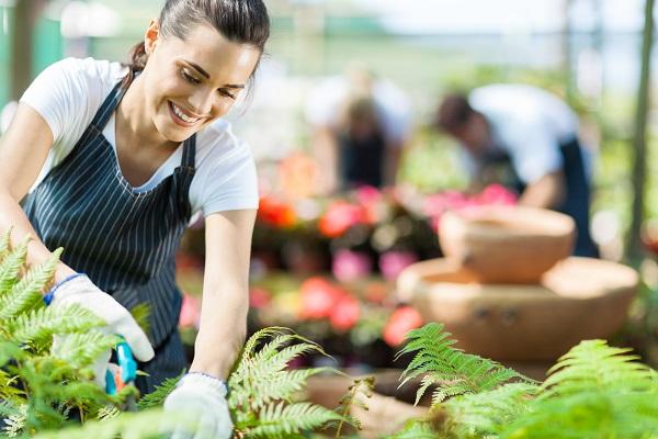 4 razones definitivas para comprar en un centro de jardinería.