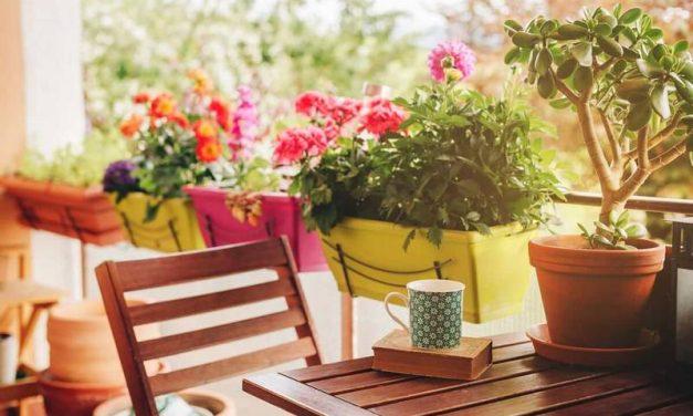 ¿Tienes una terraza o balcón? Tienes un tesoro y te ayudamos a disfrutarlo