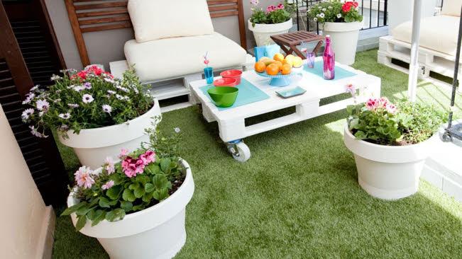 Disfruta el verano ¡con plantas!