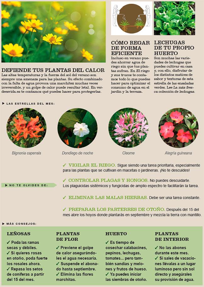 Agenda del Huerto y Jardín de Agosto