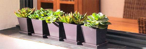 decorar-con-plantas-artificiales-de-calidad