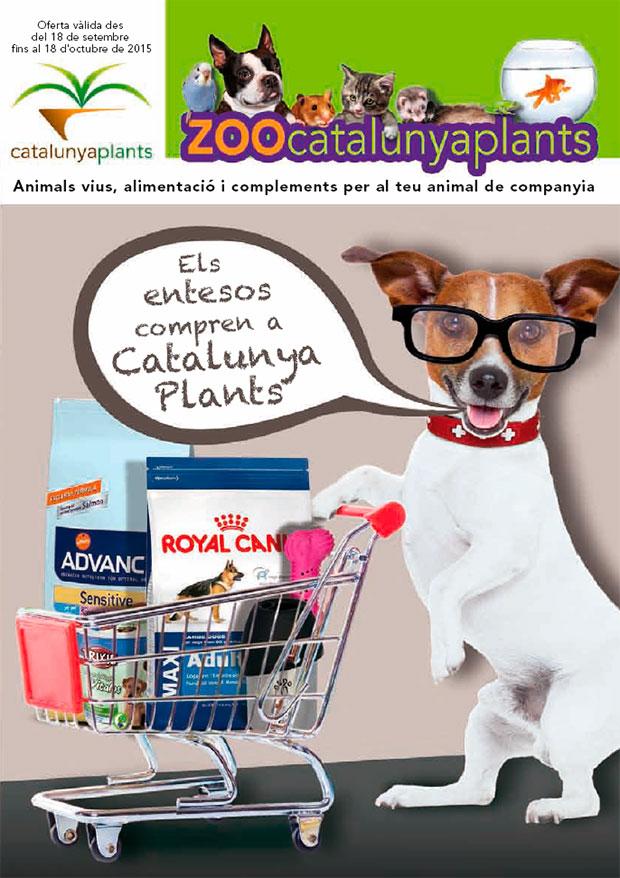 Aprovecha las ofertas de nuestro CATÁLOGO ESPECIAL MASCOTAS.