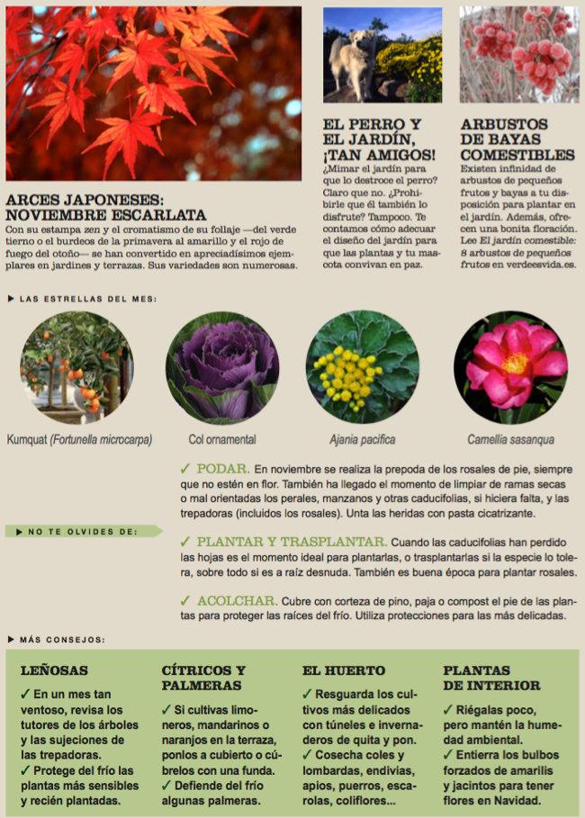 Agenda del Huerto y Jardín de Noviembre.