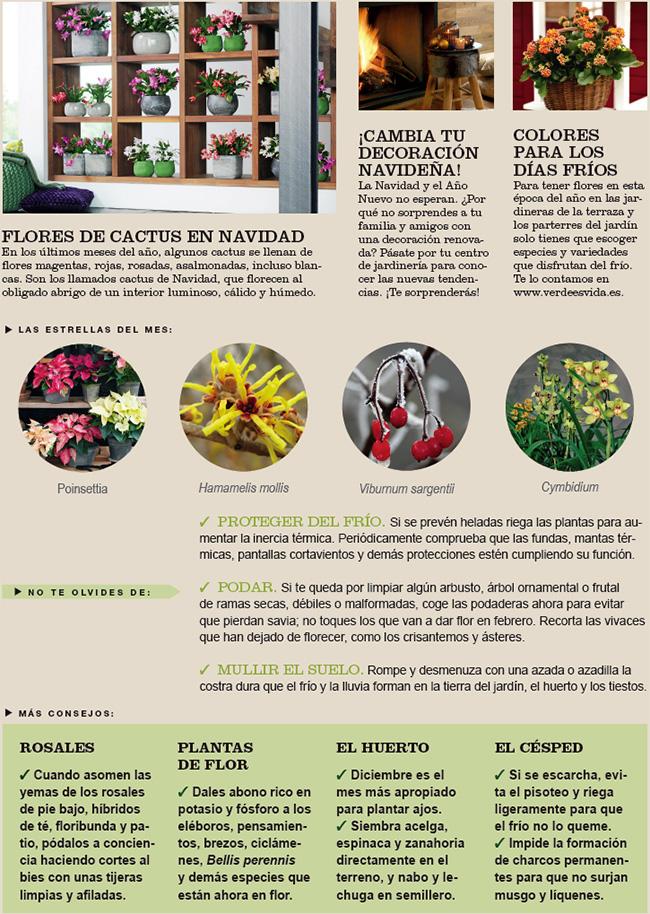 Agenda del Huerto y Jardín de Diciembre.